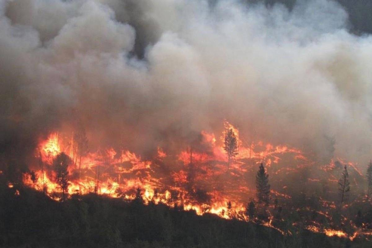 Картинки по запросу British columbia wildfires