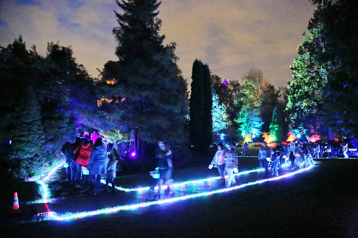 Festival To Light Up Surrey Park For Seven Nights Starting