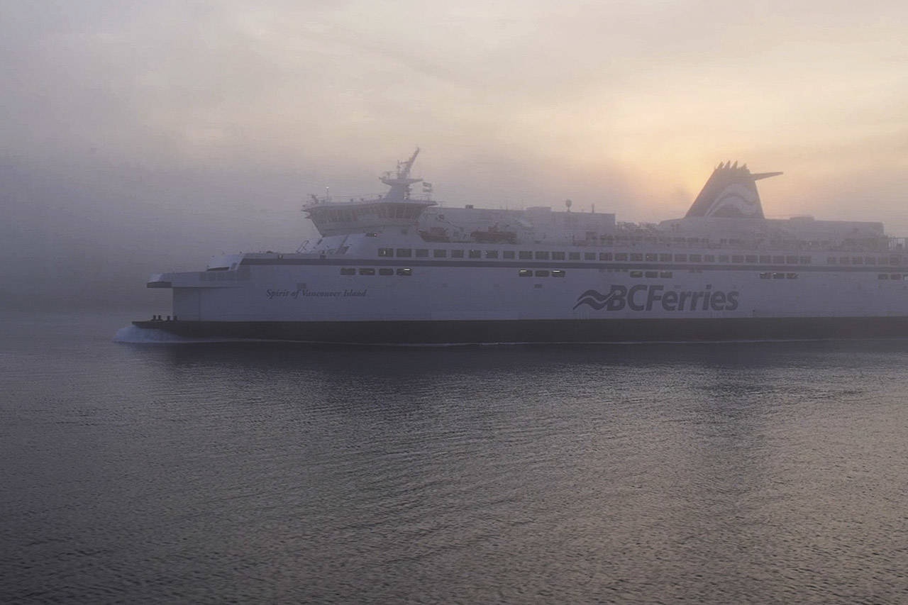 Update Bc Ferries Cancels 80 Sailings Amid Wind Storm Surrey Now