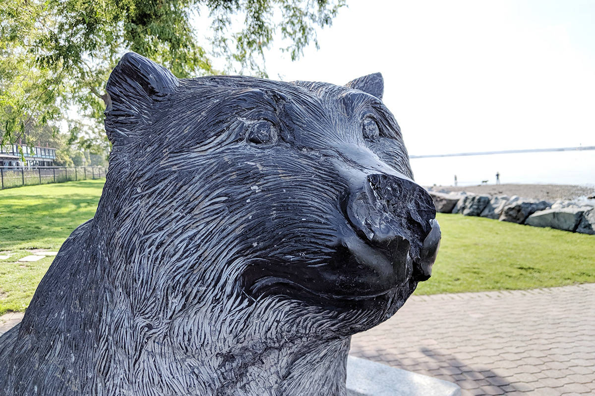 White Rock's 'Grizlee' sculpture to be replaced