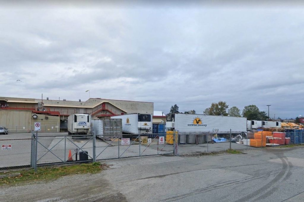 29 staff test positive for COVID-19 at Surrey poultry processing plant - Surrey Now-Leader